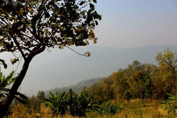 chiang mai_hill tribes_trekking_travelettes_annika ziehen_thailand - 12