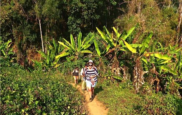 chiang mai_hill tribes_trekking_travelettes_annika ziehen_thailand - 40