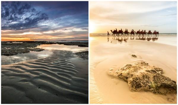 matt camels 2