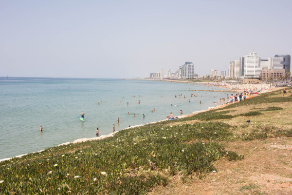 the travelettes guide to tel aviv - kathi kamleitner-11