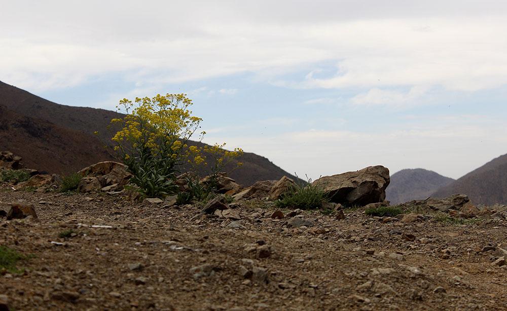 kasbahdutoubkal-morocco-travelettes20150504_0091