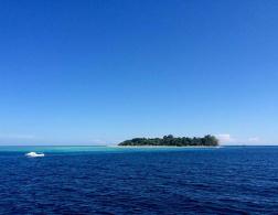 10 Traveletty Island Essentials