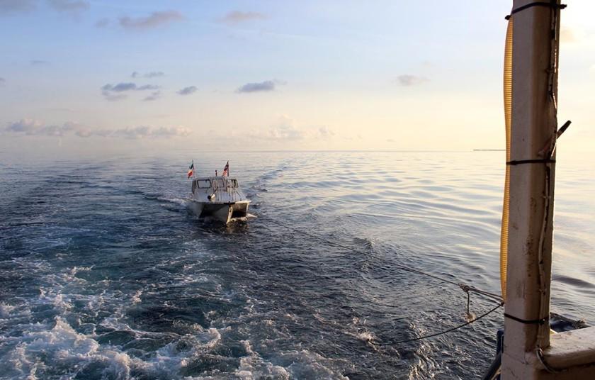 sipadan-borneo-diving-travelettes20150731_0351