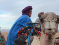 My Desert Adventure - Discovering Morocco with a Group Tour