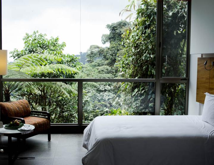 Hotels We Love: Mashpi Lodge, Ecuador