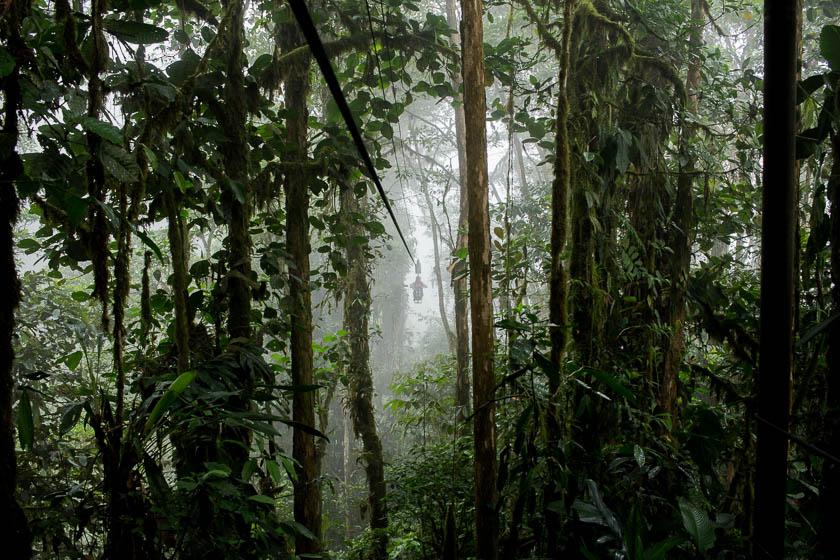 Hotels We Love, Mashpi Lodge Ecuador, Travelettes Kathi Kamleitner 18