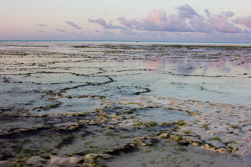 Zanzibar, Like a Local, Kathi Kamleitner, Travelettes -76