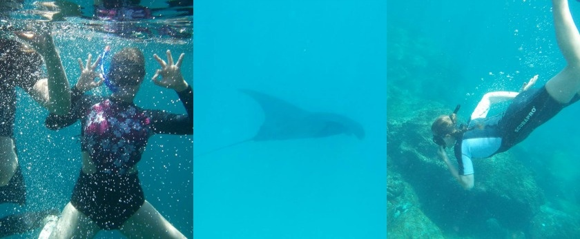 How to get the best out of the Galapagos Islands, Kathi Kamleitner, Travelettes - snorkel