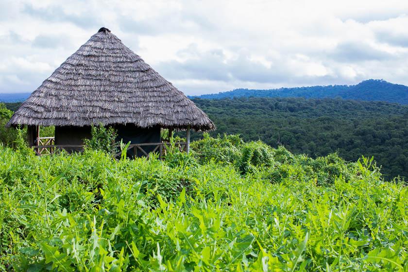 Rhotia Valley Lodge, Safari, Tanzania - Kathi Kamleitner, Travelettes