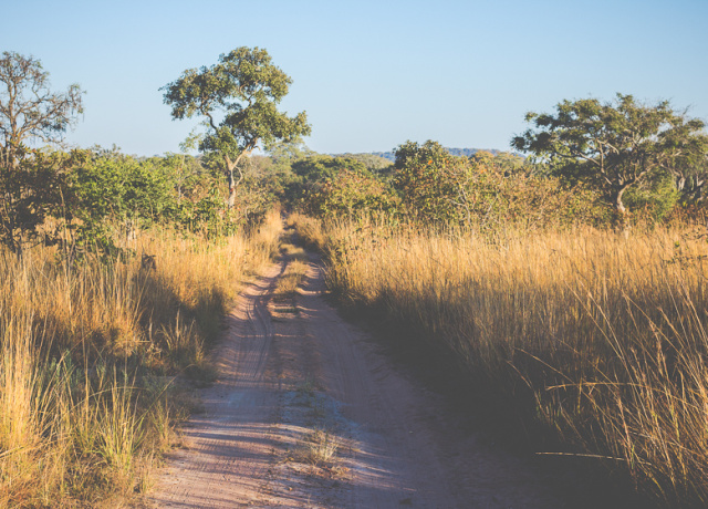 The Ultimate African Safari on a Budget