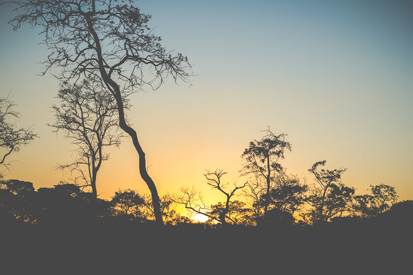 Budget Safari - Kafue National Park - Kathi Kamleitner - Sunset