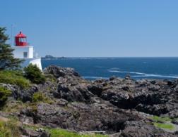 5 Reasons to visit Ucluelet, British Columbia