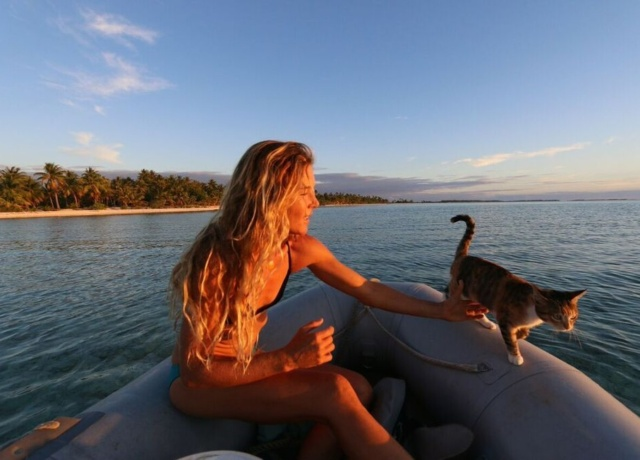 Meet the pets who travel more than you