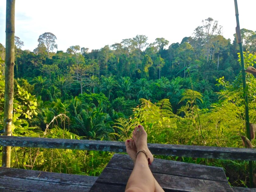 Would you travel barefoot through South East Asia? Our guest writer Alyssa did and tells her story of lost flip flops and new found rooting.