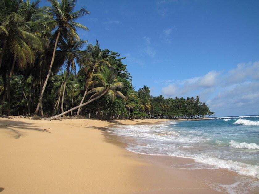 Sao_Tome_Praia_Inhame_25_(16249115625)