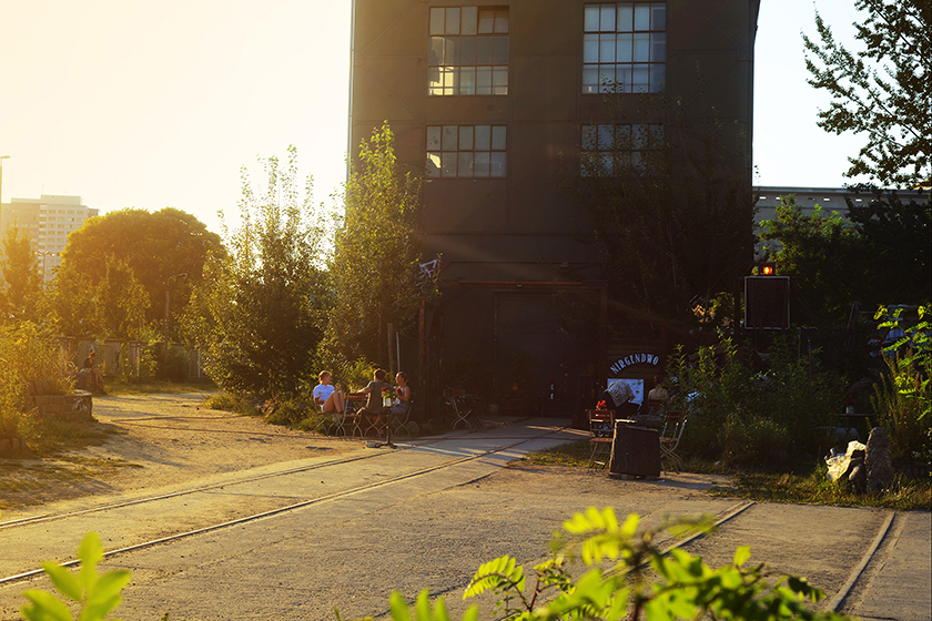 tabea-mathern_hunting-down-berlin-summer-wilder-hase-2