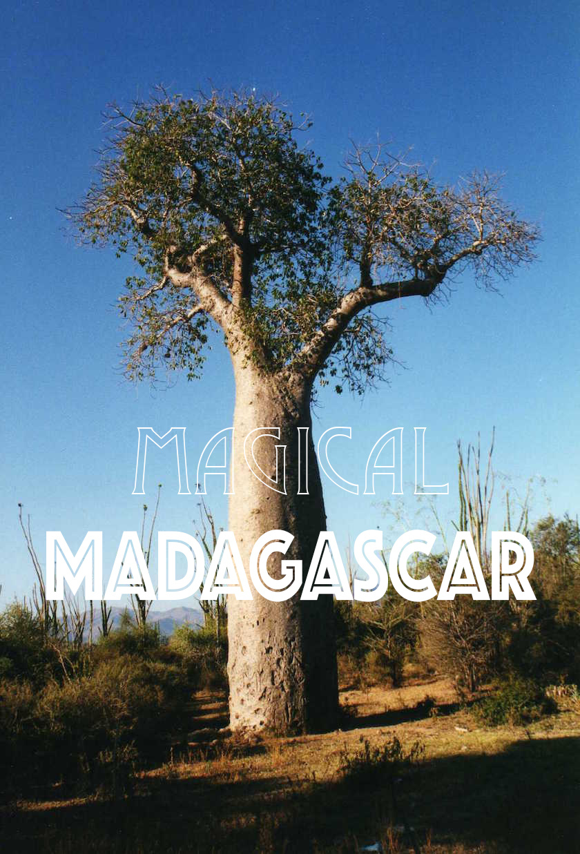 Some trips change your life and your perception of the world forever - a trip to Madagascar, with its'at the end of the world' reputation is one of them.