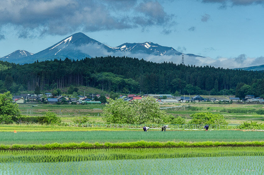 Hundreds of miles from the mega-city Tokyo lies the Aomori Prefecture - home to vast expanses of mountains, wild hot springs and luxurious winter resorts.