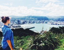5 Cool things to do in Wellington, New Zealand