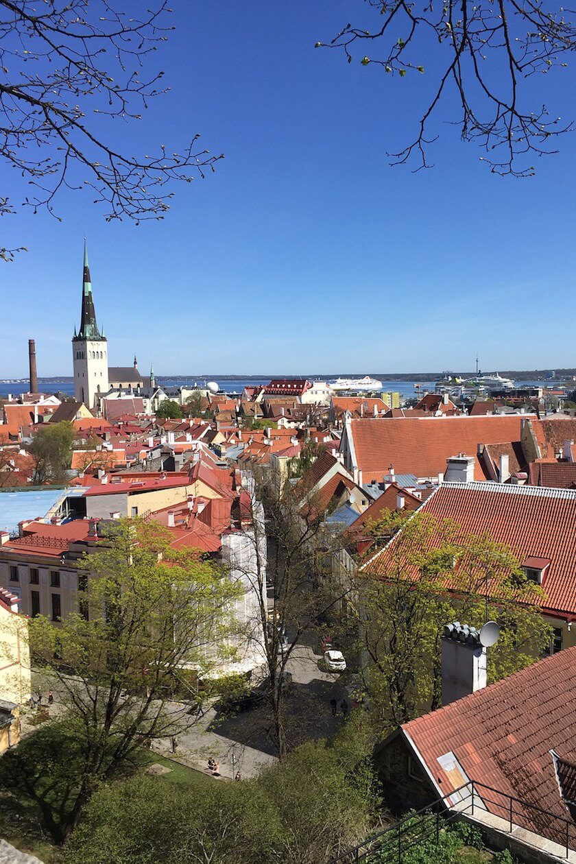 Have you ever considered a trip to the Baltic States? Here are five surprising reasons to go and explore Latvia, Lithuania and Estonia!