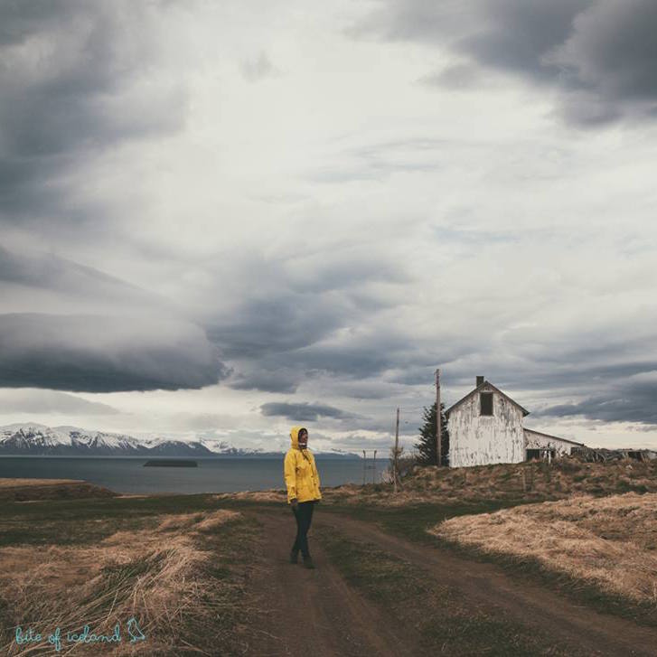 Escaping the crowds in Iceland is becoming increasingly hard. Here are 5 local travel blogs that will make you want to go to Iceland - inside knowledge included!