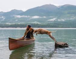10 Pets of Instagram having Adventures we only Dream of...