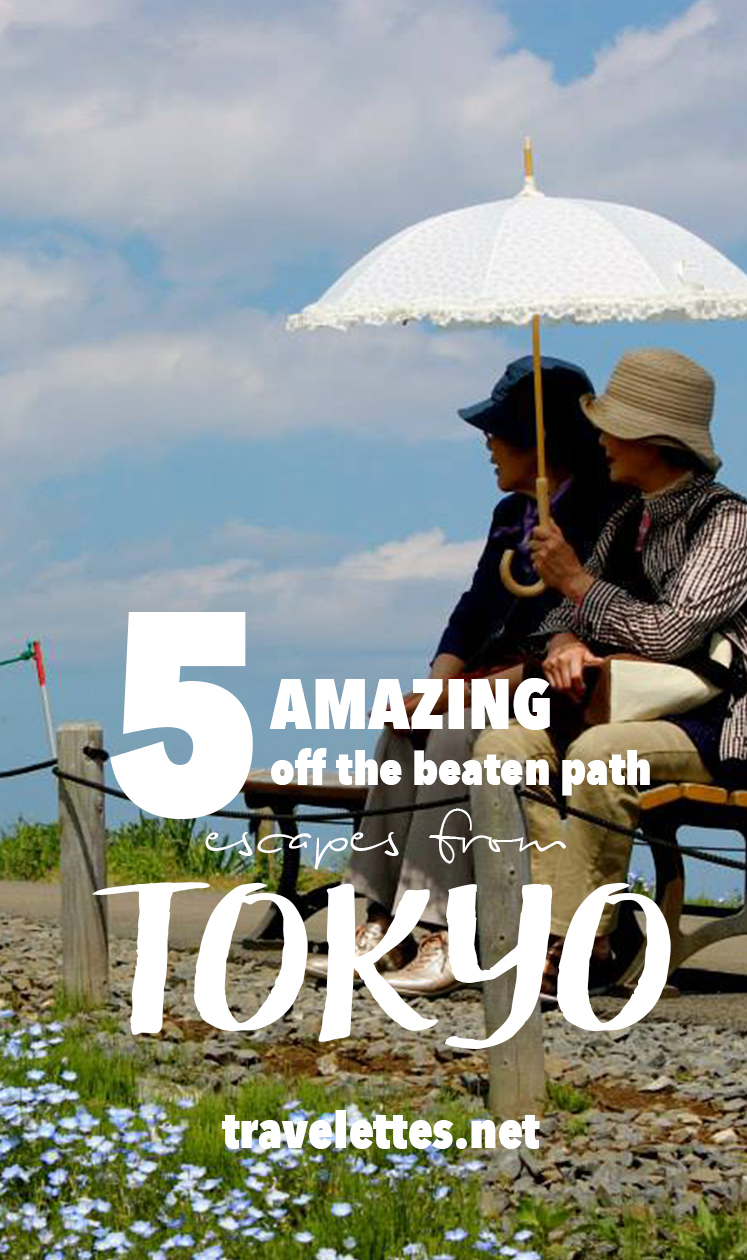 Need to get away from the big city and want to explore places no guidebook has mentioned? Try these five amazing off the beaten pack escapes from Tokyo!
