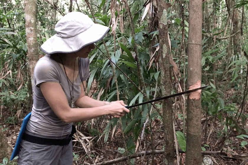 What do you need to survive in the jungle? Guest blogger Elena went on a survival trip to the Bolivian Amazon and shares her story here!