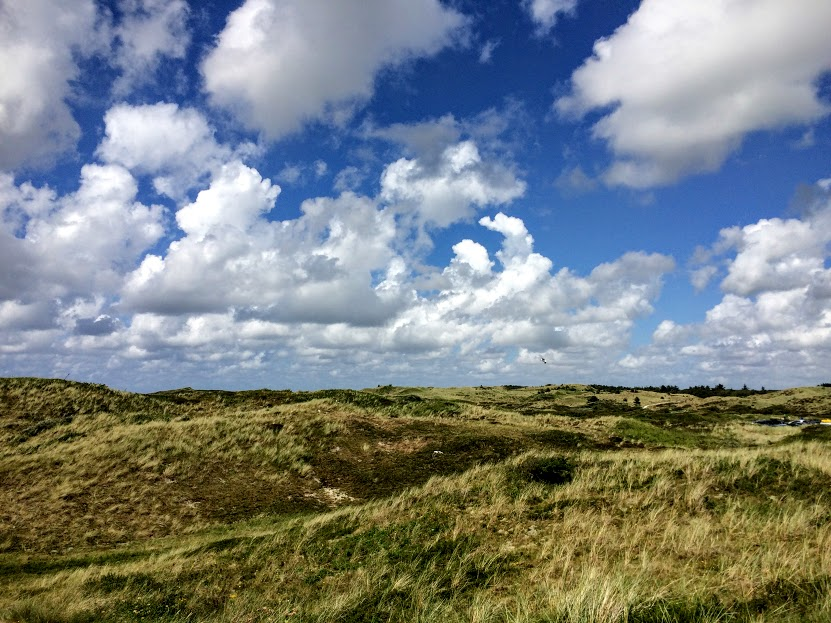 Time for a day trip to Texel Island in the Netherlands! The mix of nature, great food and cycling is a winning recipe for a perfect weekend in the Dutch countryside.