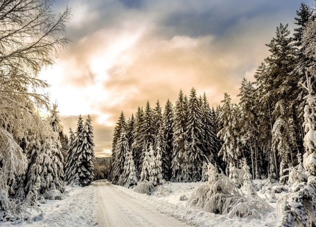 10 Must Have Experiences in Sweden in Winter