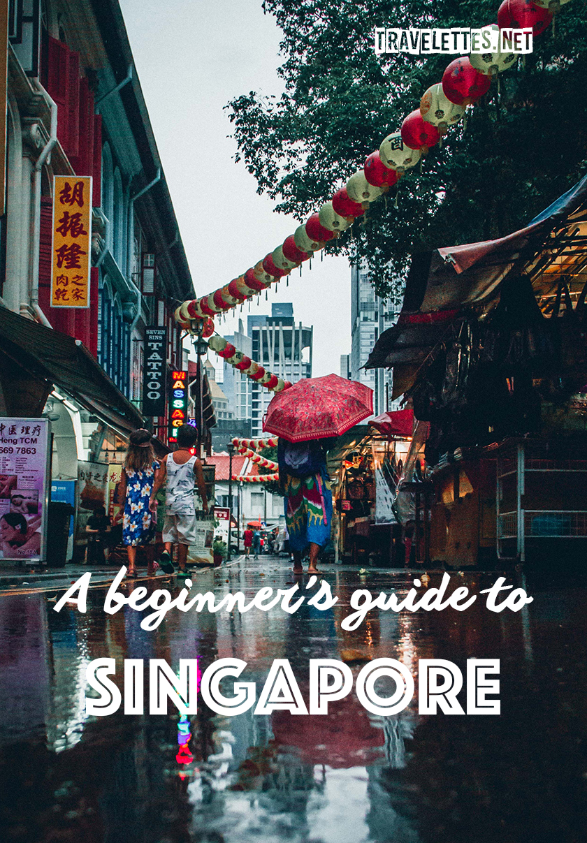 A beginner's guide to Singapore