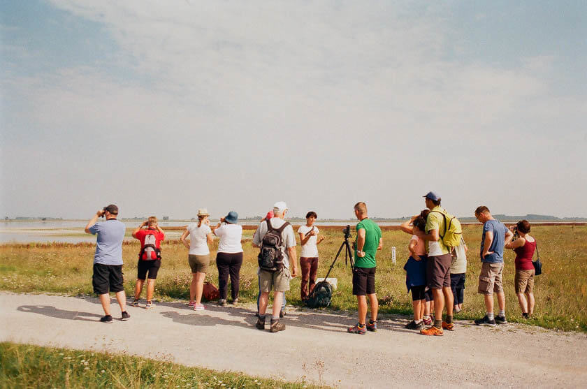 A guided tour with one of the National Park's nature guides at Lange Lacke in Austria.