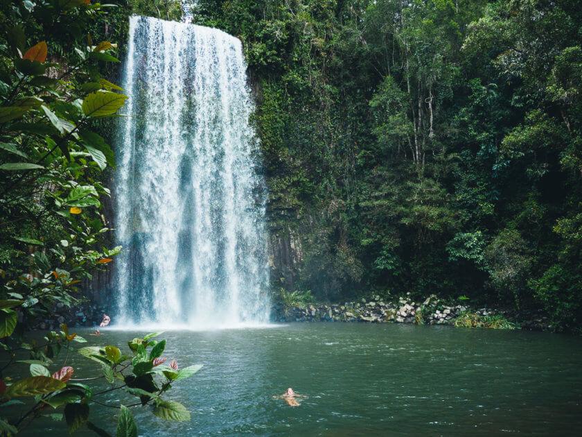 Millaa Millaa Waterfall Swim