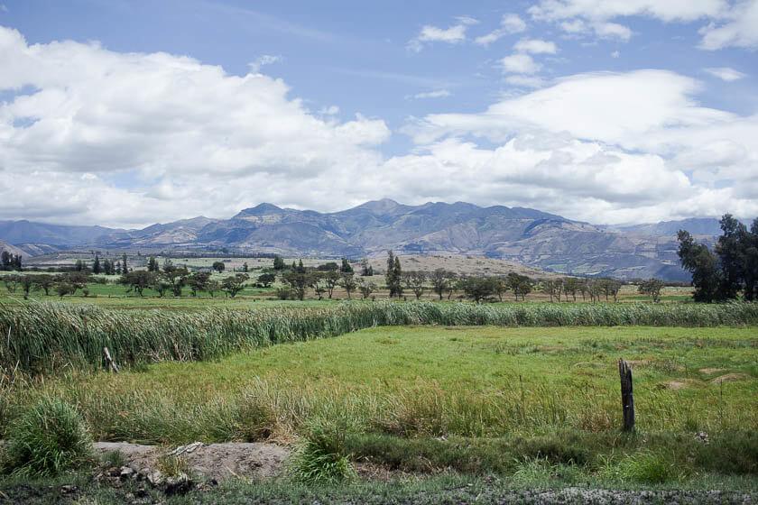 The lush green scenery along the route of Tren de la Libertad in Ecuador.
