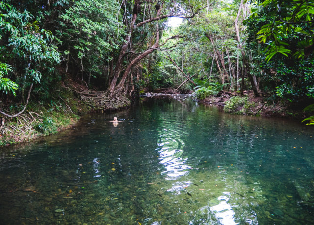 Top 5 croc/stinger/shark free dream swims in Queensland, Australia