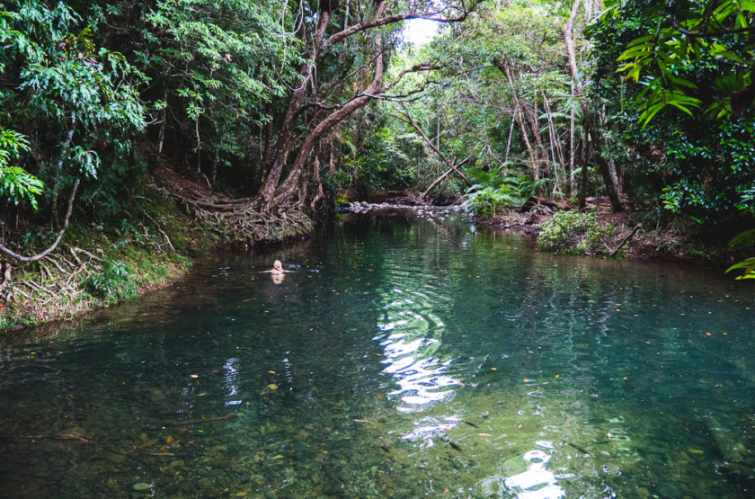 Top 5 croc/stinger/shark free dream swims in Queensland, Australia