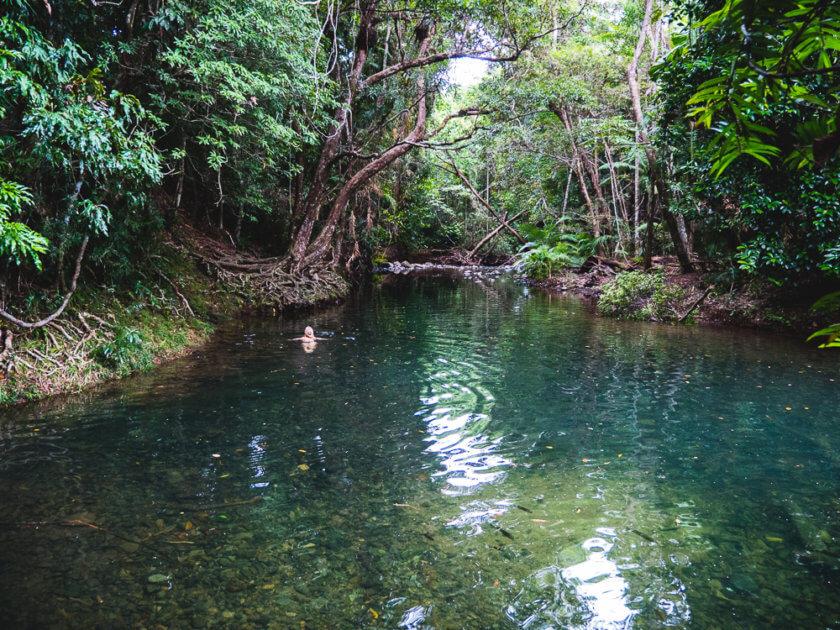 Mason's swimming hole Cape Tribulation