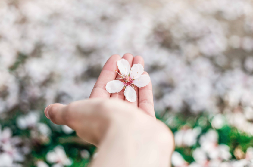 6 inspiring spring traditions from around the world