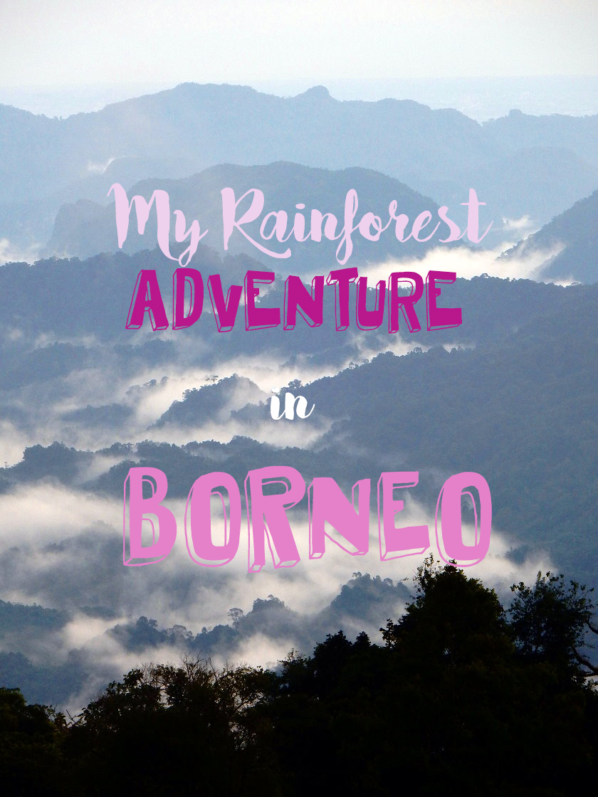 Rainforest Adventures in Sarawak, Borneo