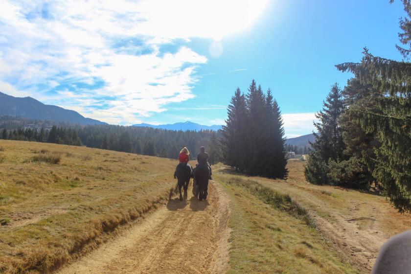 horse riding in poiana mountains romania