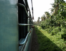 Planes, busses, trains, cars - getting around in India