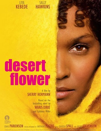 Desert Flower - a great movie and an important subject