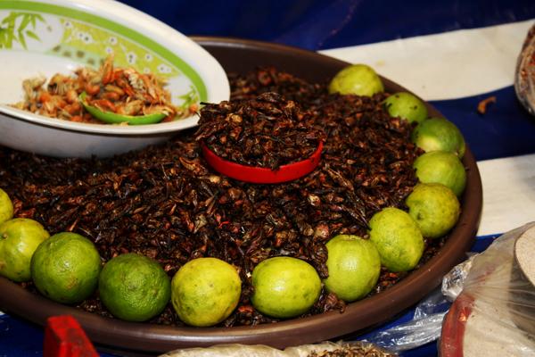 Mercado mexicano ants