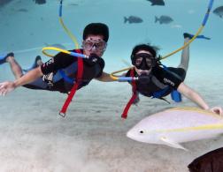 Snuba diving