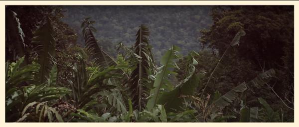 We were Wanderers on a prehistoric Earth screenshot