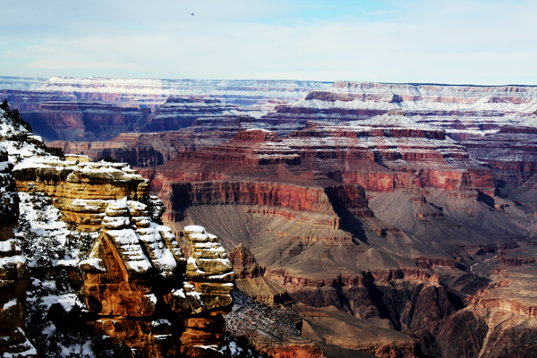 Dear Grand Canyon, I love you