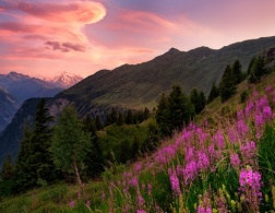 Not Just For Winter - The Alps