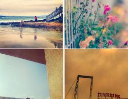 Fall Instagram Challenge – Recap #2