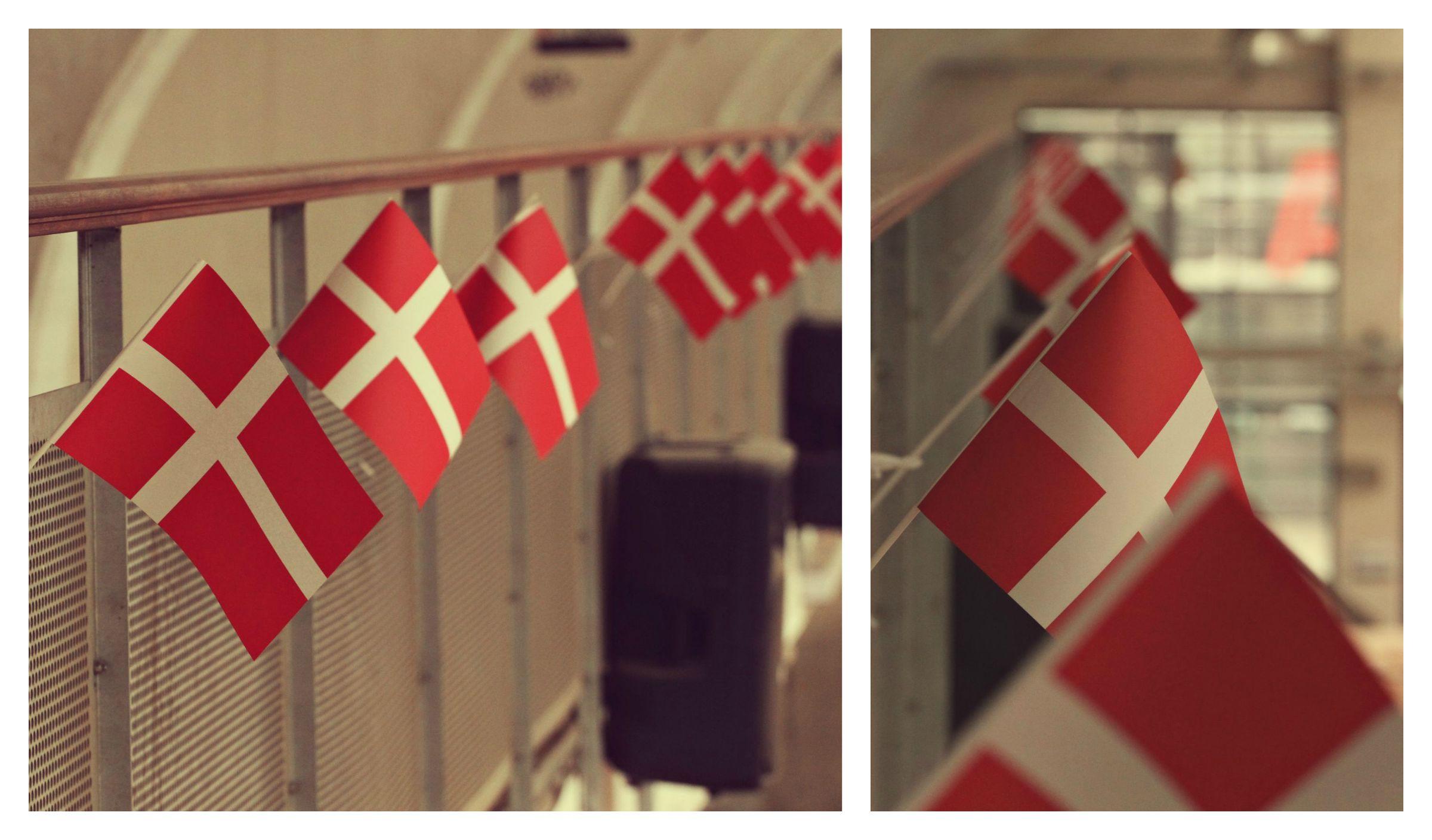 flagsdk76.jpg