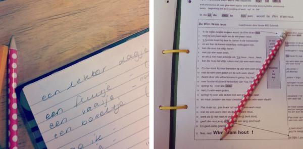 Learning Dutch in Amsterdam